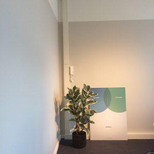 kleuradvies en schilderwerk kantoor